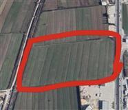 Ringa (Shitet Toka Ne Autostraden Tiran-Durres)279