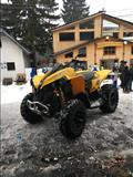 atv can am renegade