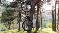 Bicikleta Capriolo
