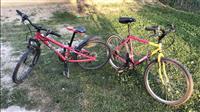 Shiten dy biciklla te ardhura nga slovenia 60 euro
