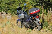 Motorr 650 cc
