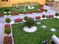 rregullojm kopshte