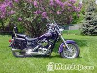 Kawasaki vulcan 800cc -04