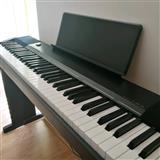 Piano elektrike CASIO CDP-130