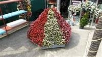Shitet Piramida per lule