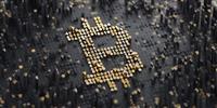 shes bitcoin