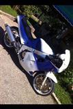 Yamaha FZR 1000cc Urgjend