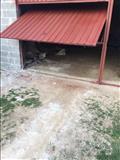 Dyer Garazhe