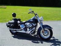 moto Davidson