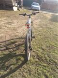 Shes biciklet