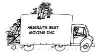 Transport profesional