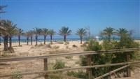 Gandia Beach, Paseo Neptuno, 46730 Valencia Spanjë