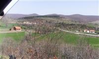 10,5 hektara