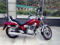 Motorr 125 cc