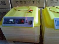 Incubator automatik