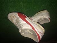 Shiten kepucë