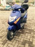 Shes Skuterin Honda