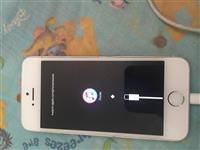 Iphone 5s me itunes per pjes