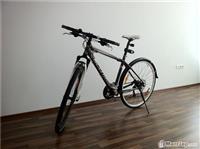 SCOTT  American Bike