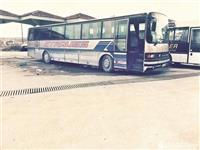Autobus stra  215 HR