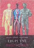 Atlas i vogël anatomik - Trupi ynë