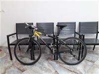 Bicikel Skot