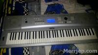 Yamaha Portable Grand DGX 220