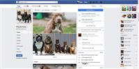 Shes faqe ne facebook