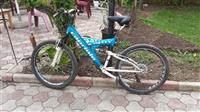biciklet capriolo