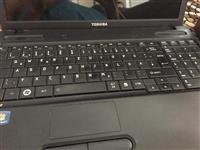 Shesh laptop