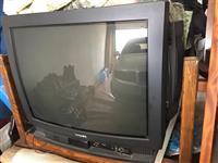 Televizion