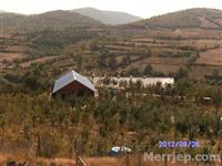 Leshoj me qira dy lokale 480m2, në Kolovicë-Prisht