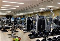 MAKINAVE PER FITNES MATRIX, LIFE FITNES,TECHNO GYM