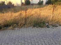 Truall Zhabar i Ulet