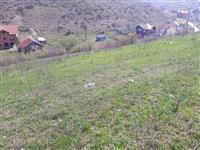 Urgjent Shitet trolli 4-6 ari - Prishtine