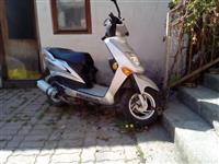 Shitet Pegasus 50cc 2012