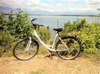 Biciklet Prophete