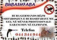 Kompania per shfarosjen e bubashfabave Buba German