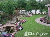 Rregullojmë kopshte të shtëpive