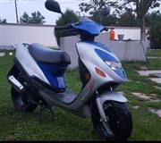 Rex50cc