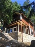 Villa nga druri
