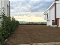 Rregullimi i kopshteve