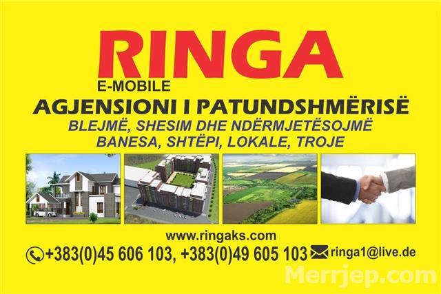 Ringa--Shiten-7-Banesa-ne-Qender-te-Ferizajit-536