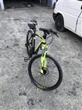 Bicikleta Phoenix