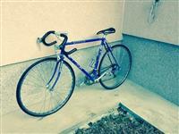 Shitet biciklla sportive