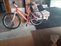 shes bicikull caprollo