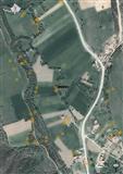 3.5 hektara obradive zemlje i 6 hektara sume u sel