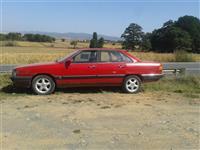 Audi 100 benzin -87