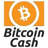 Shes Bitcoin Cash
