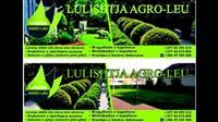 Rregullimi i kopshtit